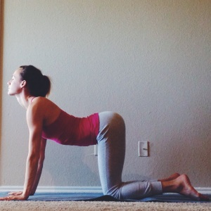 Cow Pose - Yin Yoga