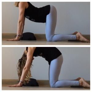 yin yoga  strap sequence  nancy nelson  yoga  wellness